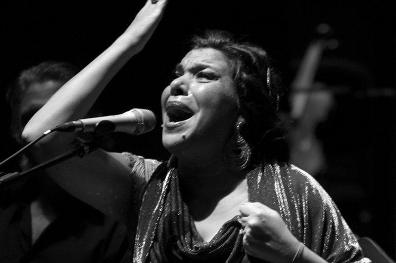 Macanita LesArts-Valencia-director